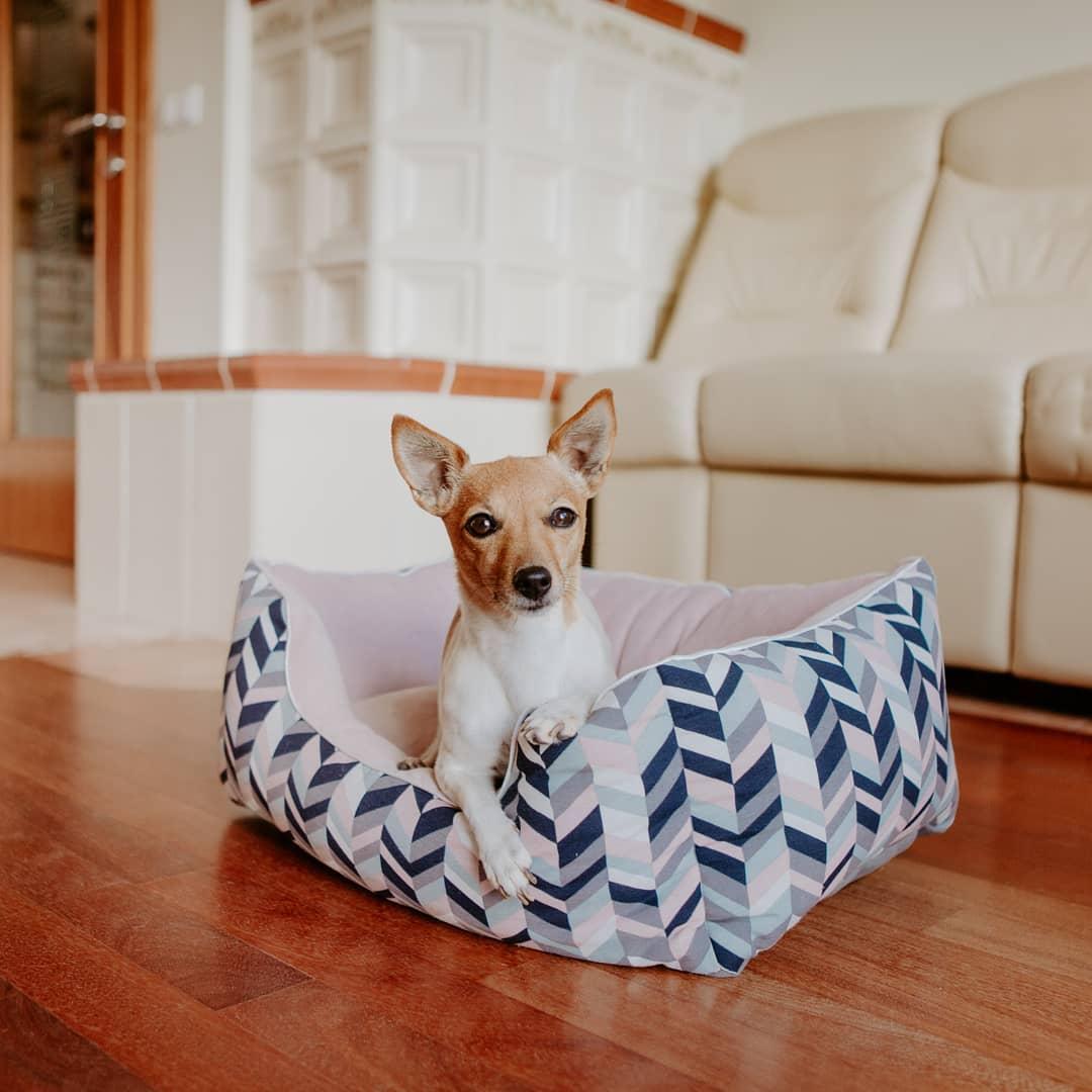 Bettgröße Berni KUSS Überprüfen Sie, welche Bettgröße Ihr Haustier benötigt